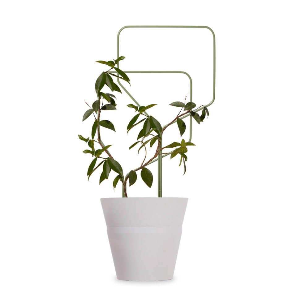 lipa studio macura rankgitter pflanzengitter